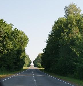 дорога в Бузулукский район