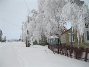 Андреевка1