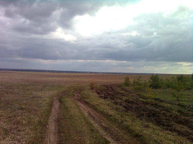 Дорога в забытую деревню