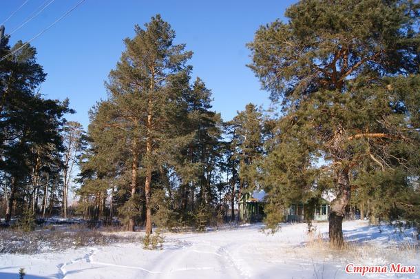 Болотовск