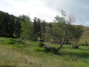 Губ горы 4