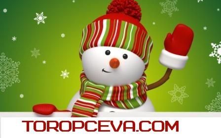 s novym godom ot toropceva.com