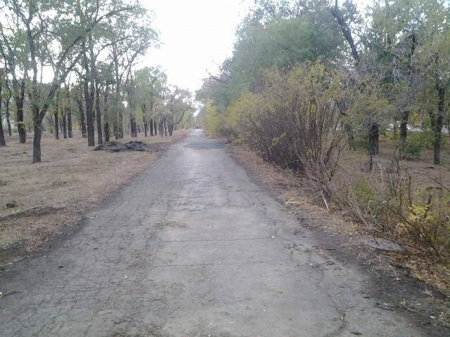 Аллея парка на проспекте