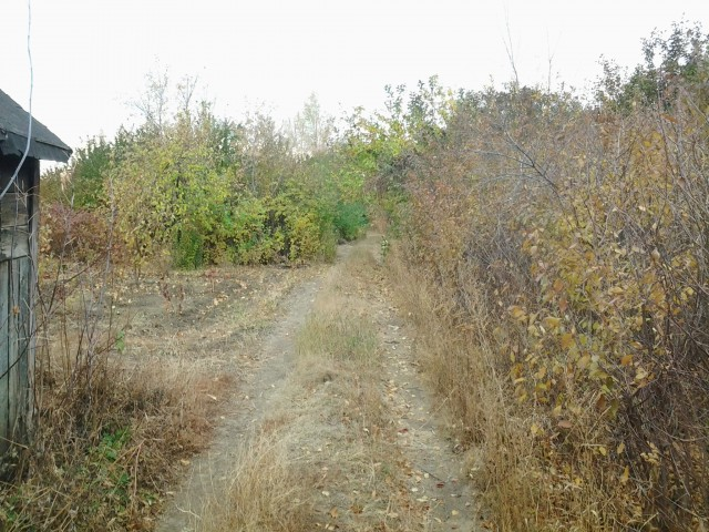 Туда дальше - тупик, дорога упирается в поворот Елшанки