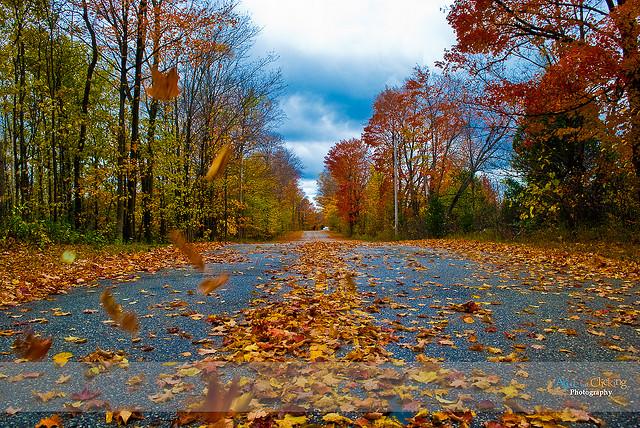 фото про осень красивые