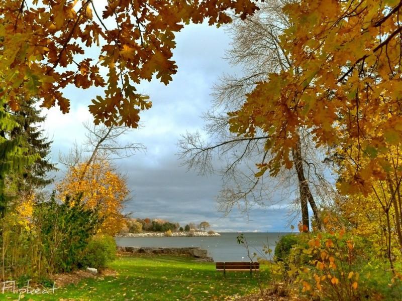 золотая осень фото пейзажи