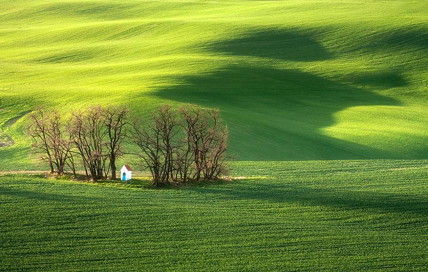 Moravian Fields 10
