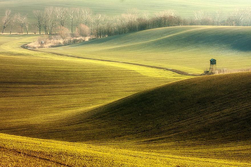 Moravian Fields 11