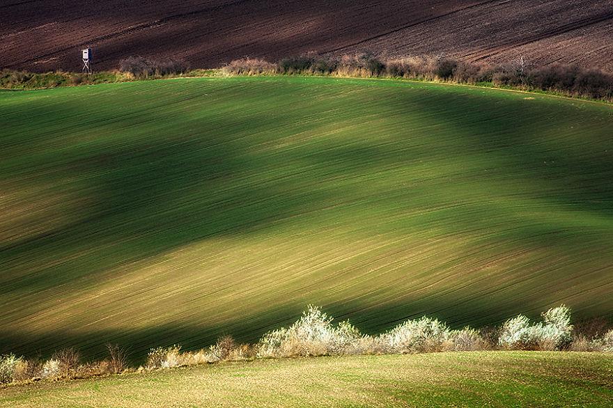 Moravian Fields 14
