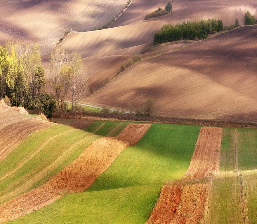 Moravian Fields 9
