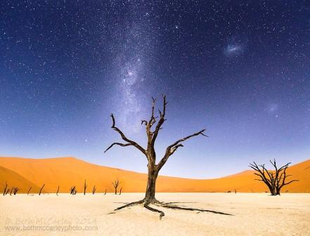 The Namib Desert, Africa