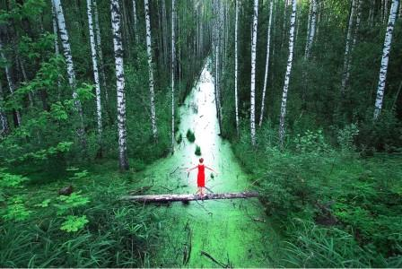 The endless forest, Russia
