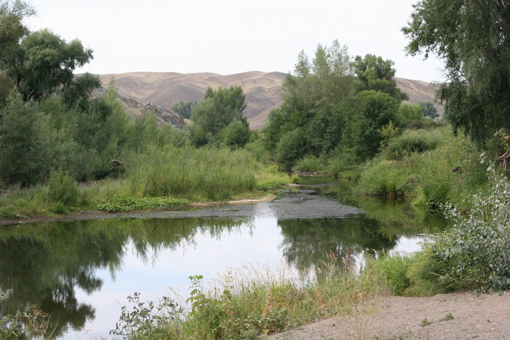 Река Губерля возле Белошапки