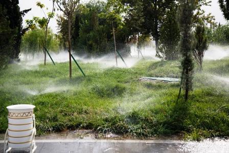 Все газоны орошаются водой несколько раз в деньg