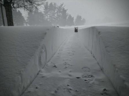 снег в америке сегодня