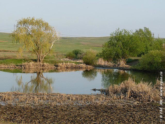 Речушка Елшанка