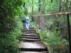 Вид снизу на лестницу